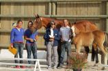 Trophée du Foal au Haras de la Vendée
